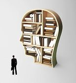 picture of academia  - businessman looking at book shelf in form of head - JPG