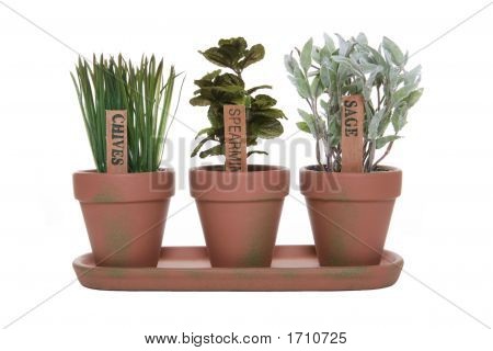 Three Herbs