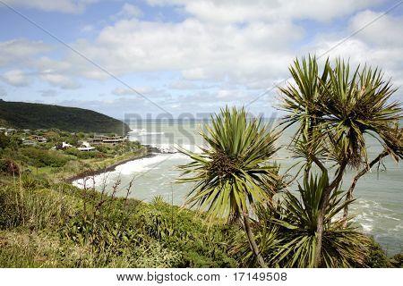 Coastal scene and blue sky, Raglan, New Zealand