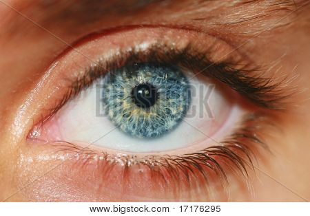 Human Eye Up Close Macro View, Shallow Depth of Field