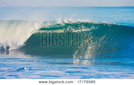 Perfect Surfing Wave Breaking in Ocean