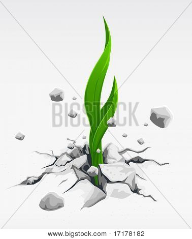 green sprout, pushing out from stones vector illustration