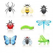 stock photo of cricket insect  - Cartoon insect icon set - JPG