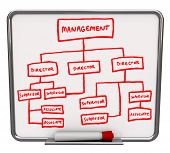 stock photo of human resource management  - A white dry erase board with an org chart drawn onto it - JPG