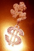 pic of gangster necklace  - Dollar symbol necklace - JPG