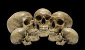 Awesome, Pile Of Skull Isolated On Black Background, Still Life Style poster
