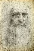 stock photo of leonardo da vinci  - Leonardo da Vinci Self - JPG
