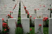 stock photo of tyne  - Tyne Cot brittish memorial cemetary of the first world war in Passendaele (Flanders Fields) ** Note: Shallow depth of field - JPG