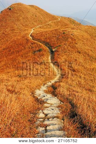 mountain path and yellow grass
