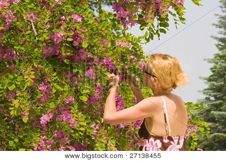 female smelling tree in blossom