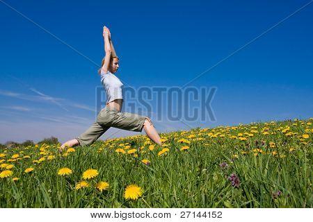 Junge Frauen, die Ausübung von Yoga auf blumige Wiese