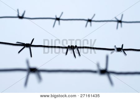 Frozen barbwire again the blue sky