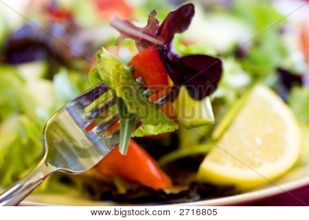 First Bite Of Salad