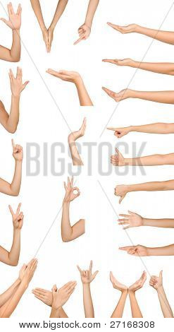 Collection of high resolution female hand gestures isolated on white