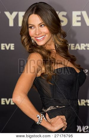 HOLLYWOOD, CA - DECEMBER 5: Actress Sofia Vergara arrives at the premiere of