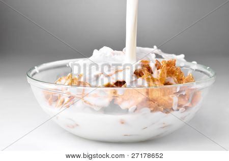 milk stream flowing to the bowl with corn flakes