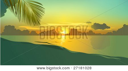 Evening beach with palm leaf