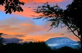 stock photo of kilimanjaro  - Sunrise on mount Kilimanjaro - JPG
