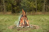 Bonfire Burning Trees At Autumn Day. Orange Flame Ongreen Forest Background. Fire On Nature. Brightl poster