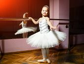 Portrait Of Smiling Young Ballerina In White Tutu And Pointes Posing Isolated In Dance Studio. Small poster