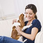 stock photo of dog-house  - An attractive young woman sitting on a couch and being kissed by a dog that she is holding - JPG