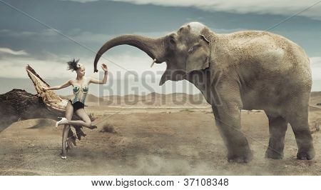 Sexy fashionable lady with elephant
