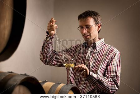 Wine producer taking sample of white wine for quality testing in wine cellar.
