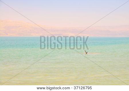 Dead Sea coast, Israel
