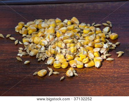 Maize And Other Seeds