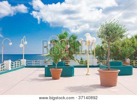 Seaside Baluster