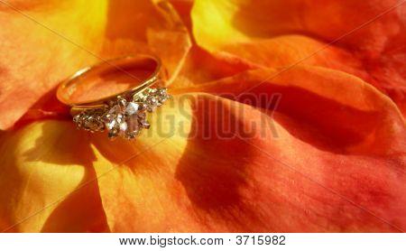 Diamond Ring On Rose Petals