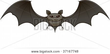 illustrated image of a bat
