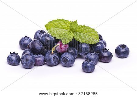 Tasty Blueberries