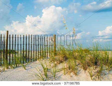 Sand Dunes and Sea Grass Along a Fence.