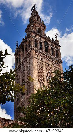 Giralda campanario del jardín naranja Catedral de Santa María de la sede Spire veleta Sevilla