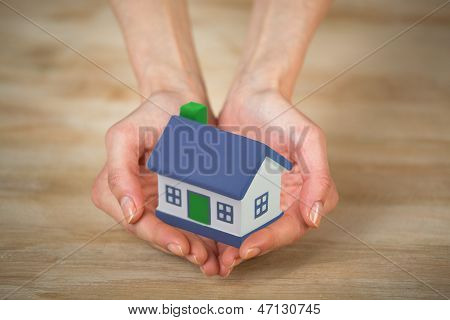 House on the hands