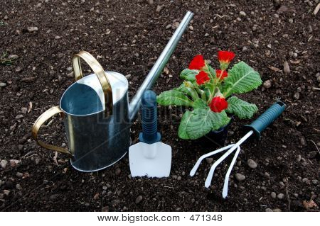 Garden Tools And Flower Plant
