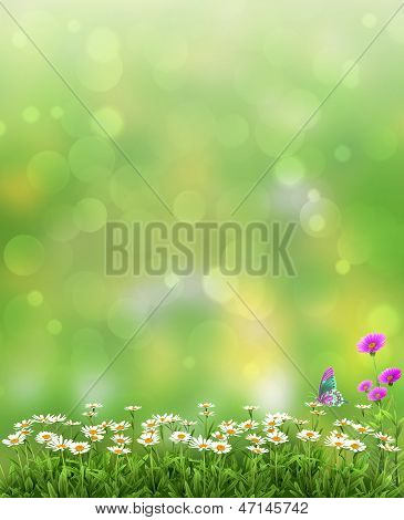 Beautiful Spring or summer abstract nature background