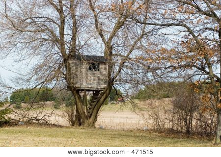 Horizontal Image Of A Treehouse