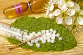 picture of placebo  - homeopathy and medicine with herbal pills and acupuncture - JPG