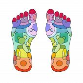 picture of foot massage  - reflexology zones - JPG