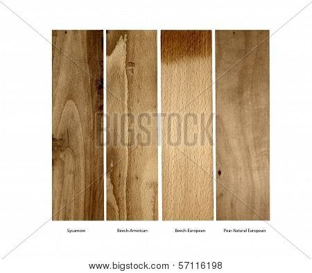 Sycamore,Beech and Pear wood samples