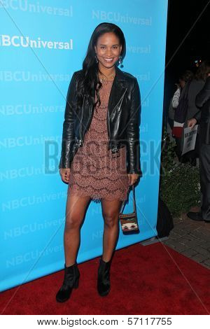 Joy Bryant at the NBCUNIVERSAL Press Tour All-Star Party, The Athenaeum, Pasadena, CA 01-06-12