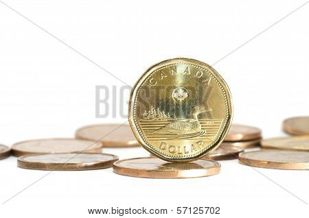 One Canadian Dollar Coins Stack On White Background