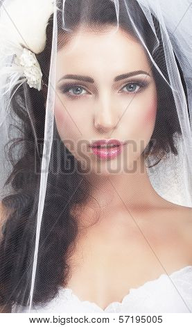 Delicacy. Caucasian Woman Hidden Behind Traditional Bridal Veil