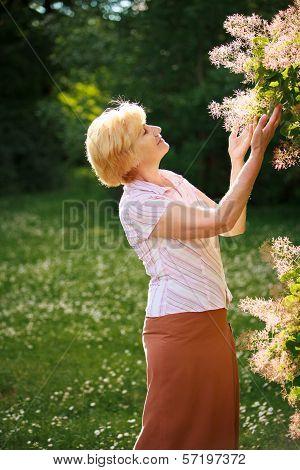 Gardening. Gracious Senior Woman And Flowers