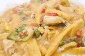 stock photo of snitch  - diced chicken in coconut curry sauce served with rice - JPG