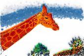 Illustration Of A Giraffe... poster