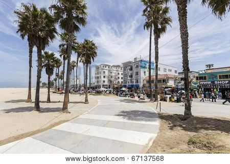 LOS ANGELES, CALIFORNIA - June 20, 2014:  Sunny skies and palm trees along the popular Venice Beach bike path in Los Angeles, California.