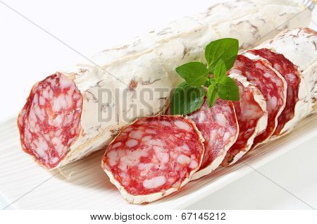 French Saucisson Sec - studio shot